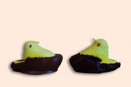 Chocolate Covered Marshmallow Chicks: click to enlarge